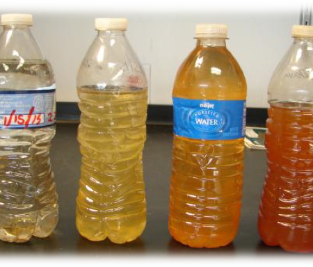 Photo of different bottles of colored water